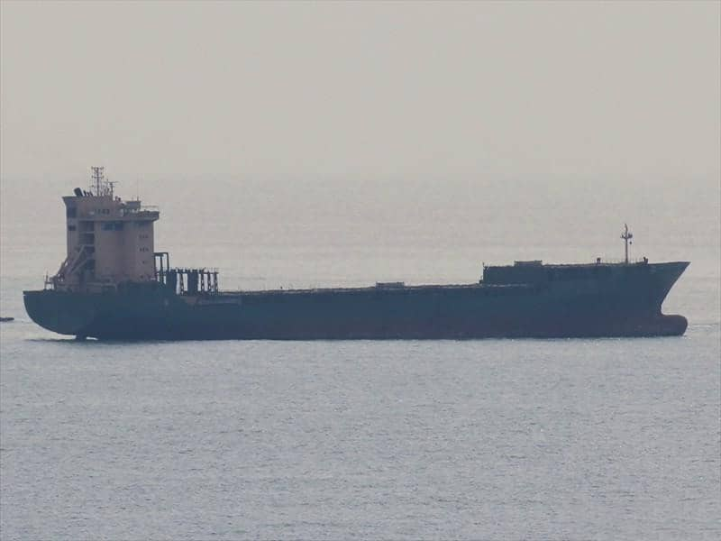 Container ship 1996 dwt 22183 photo